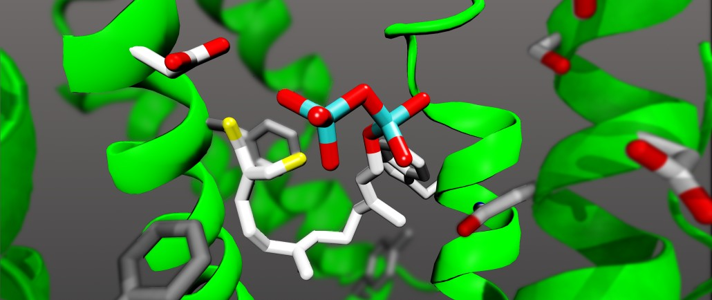 Cartoon of an FPP-derived inhibitor in the active site of a terpene cyclase