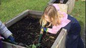 Community Garden: local residents get stuck in