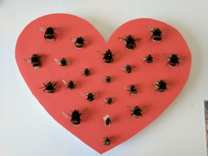 Heart of Bombus bees (the symbol of Manchester) representing the 22 victims of the Manchester Attack. The larger bees represent the adults lost and the smaller ones the children. This display was my contribution to the exhibit.