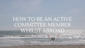 Cover image: Sea overlayed with text saying: How to be a committee member from abroad by Katie Hawkins