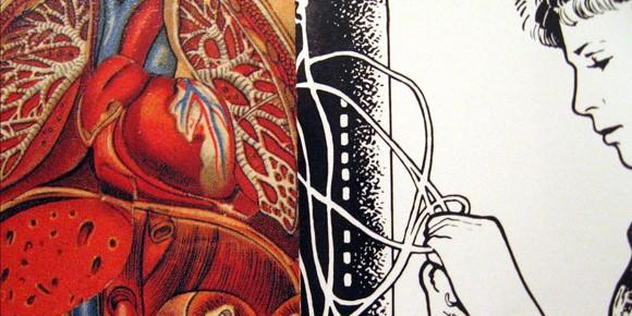Inside Information: Heart
