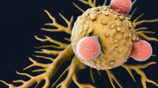 A Novel Way to Tackle Cancer?
