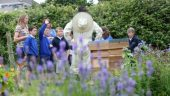 Bees Open Day