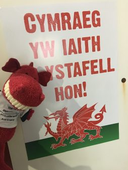 Welsh is the language of this room!