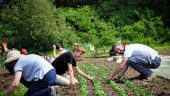 Learning Pathways into Sustainable Agriculture